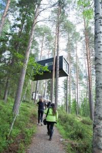 Tree hotel Photo: Caroline Lundmark