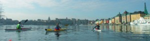 City Kayaking