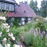 sylvias-garden-2