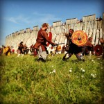 VikingTrelleborg